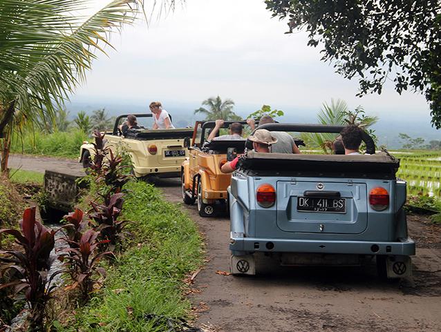 three-vw-safari-jeeps