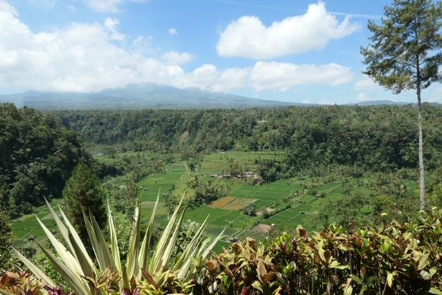 east-Bali-landscape