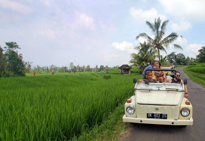 jeep-kiss-ricefield